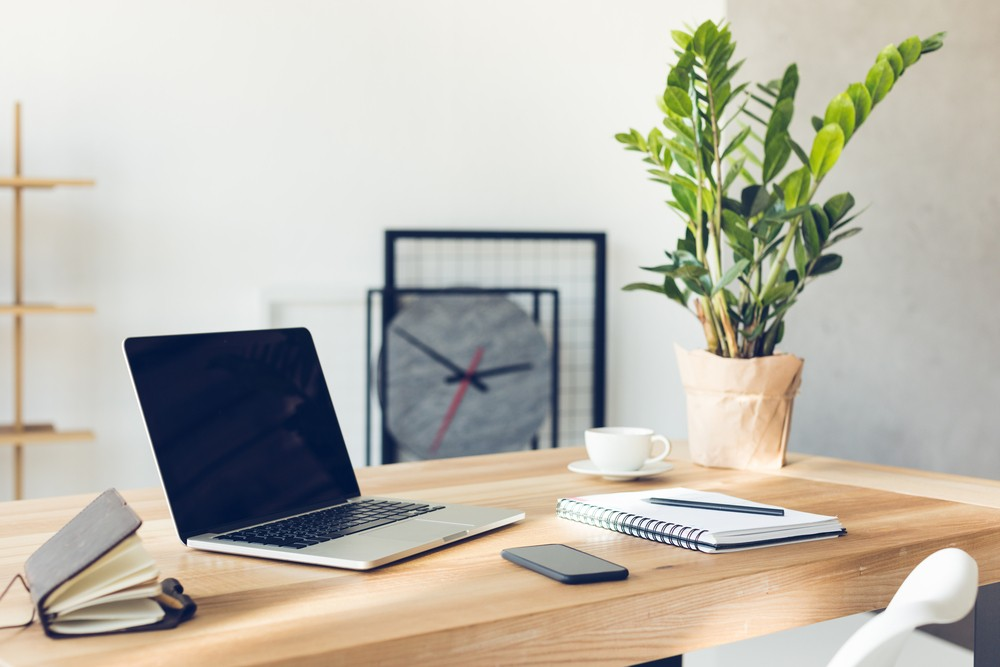 Visualizations show that many of the most germ-infested objects are present in the office environment, all of which contain microflora. (Shutterstock/File)